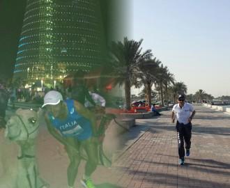 Doha, cammello e corsa 2014